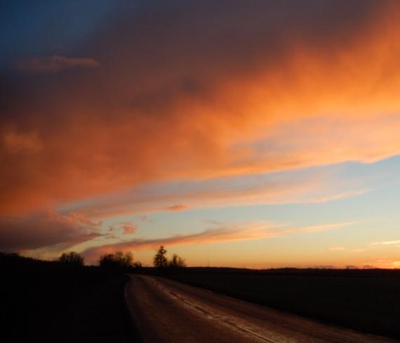 Fenland sky